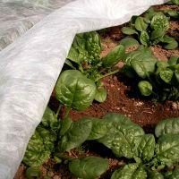 Агроволокно Premium-Agro