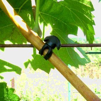Подвязки для растений (якорные крепления и хомуты)