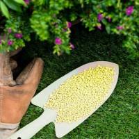 Сера садовая