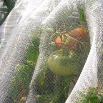 Сетка для защиты растений от насекомых