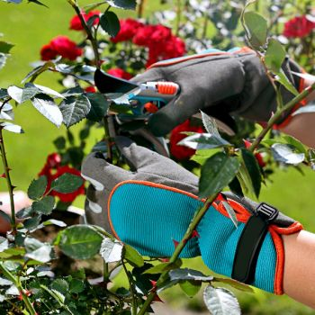 Перчатки рабочие садовые