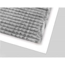 Шиповидная мембрана Изолит Profi Geo 10 2х12,5 м