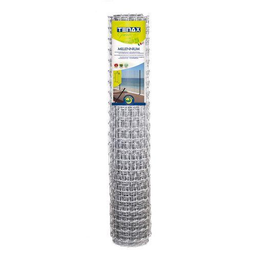 Пластиковая сетка для ограждения TENAX МИЛЛЕНИУМ 35х48 мм 2х50 м