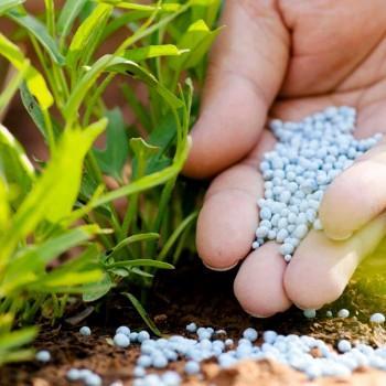 Удобрение Яра. Виды, состав и применение удобрения Yara Mila