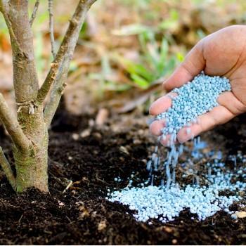 Удобрение Яра. Виды, состав и применение удобрения Yara Liva